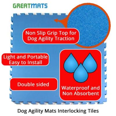 Greatmats Dog Agility Mats Dog Training Floor